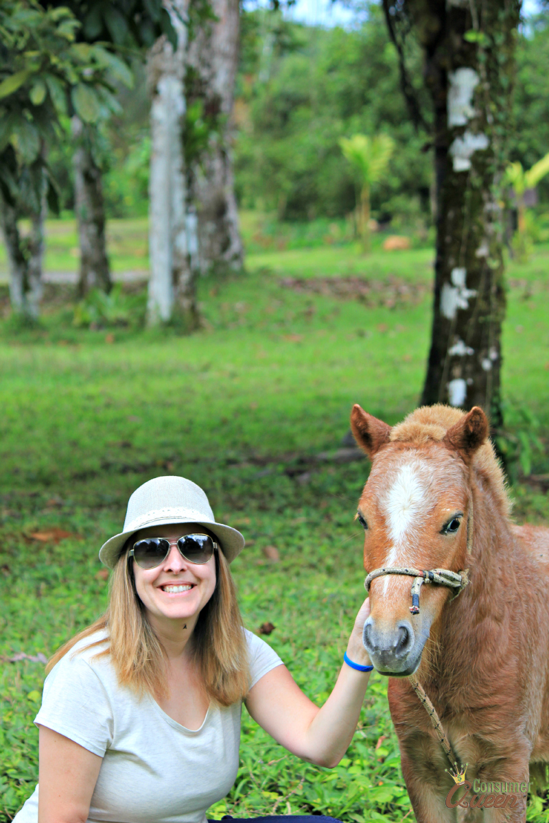 Blue River Ponies