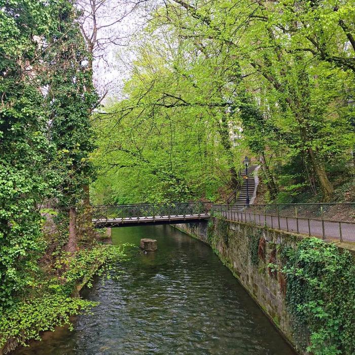 Basel Nature