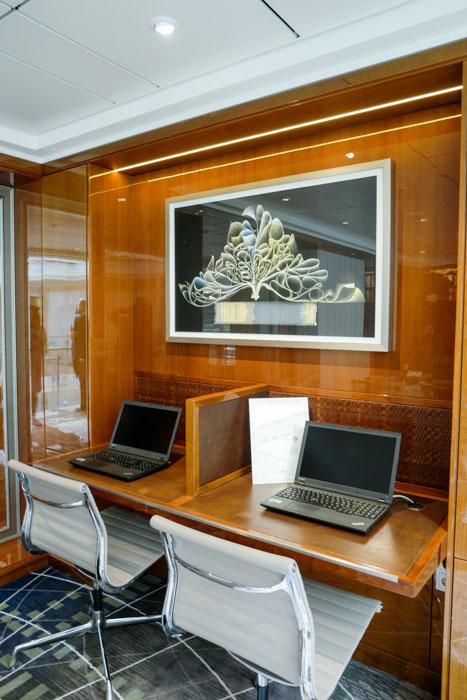 Viking Cruise Business Center (1 of 1)