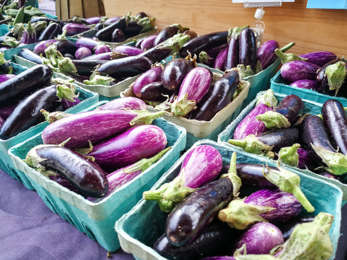Purple Eggplant (1 of 1)