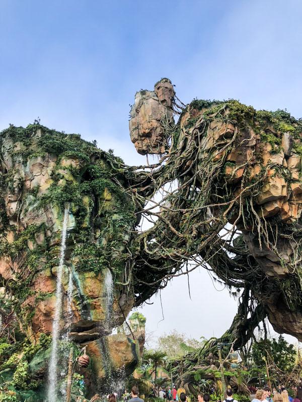 Disney Pandora (1 of 1)