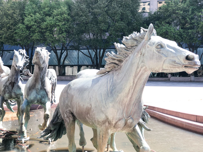 Irving Horses