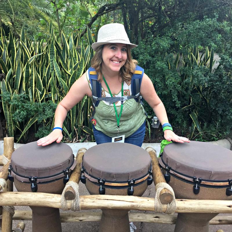 Animal Kingdom Drums