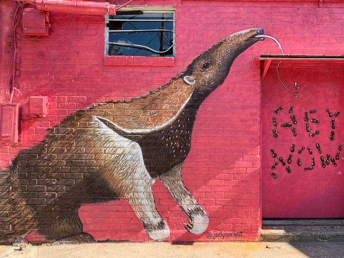 Ant eater Mural  - travel ok