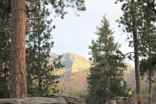 Camping at Mt Rushmore KOA