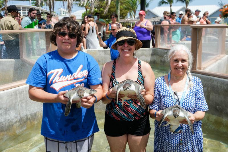Sea Turtles group
