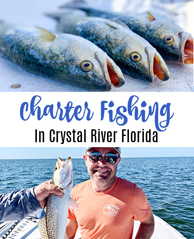 Charter Fishing in Crystal River, Florida