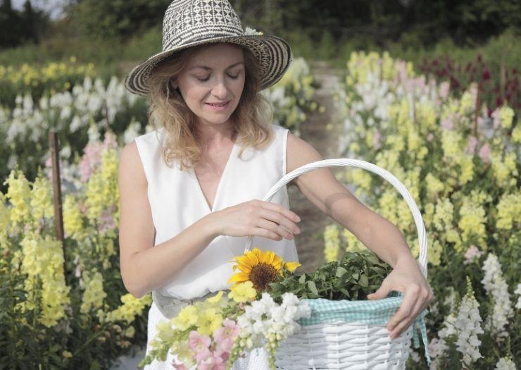 Flower Picking Farms