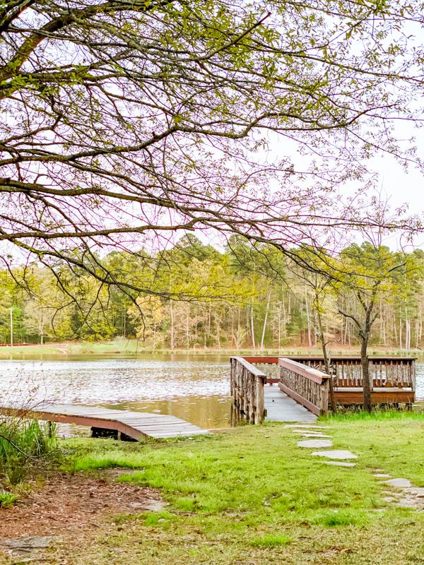 Deer Lake Dock