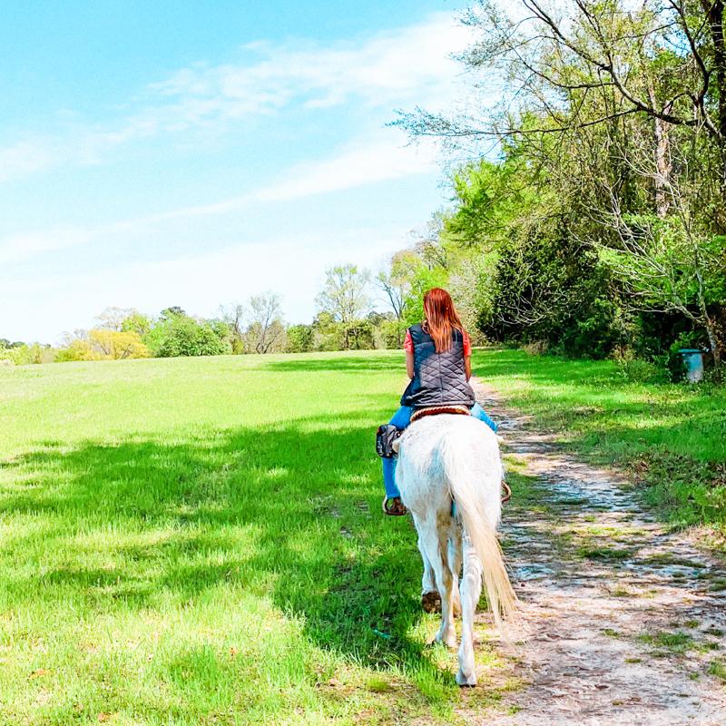Deer lake horseback riding instructor