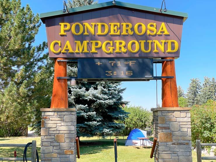 Camping Near Yellowstone: Cody Ponderosa Campground
